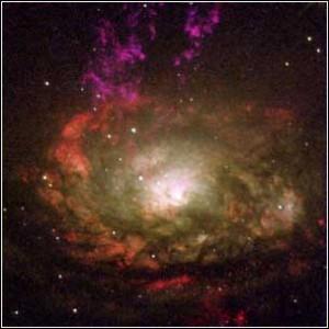 Circinus galaxy